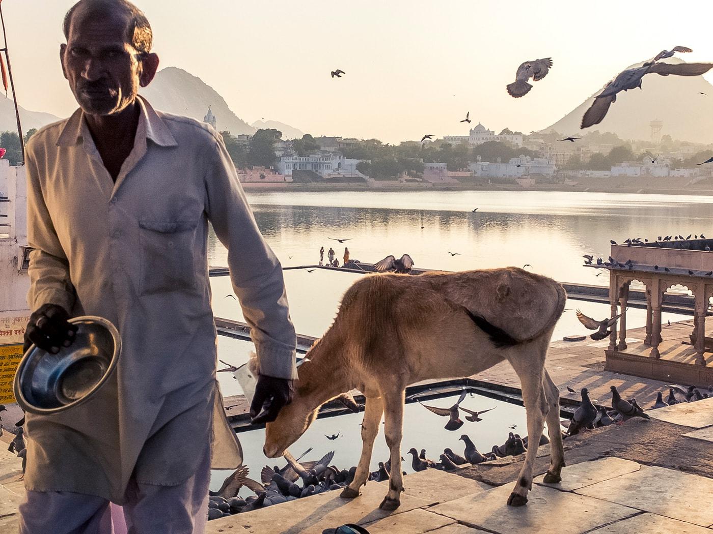 cultura indiana pushkar bramano