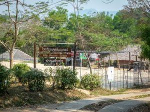 rifugiati birmani children of the forest scuola