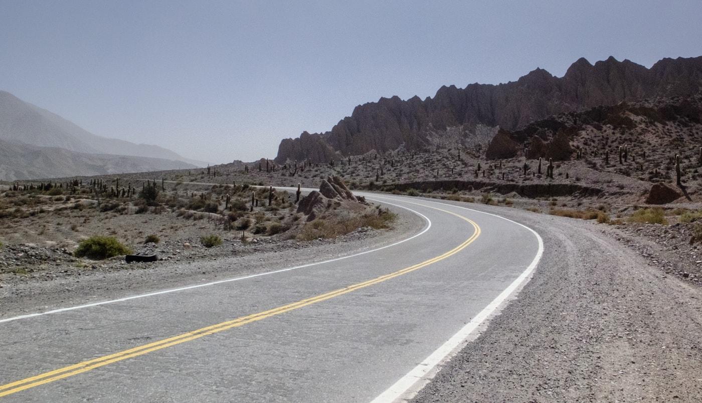 argentina del nord deserto catus