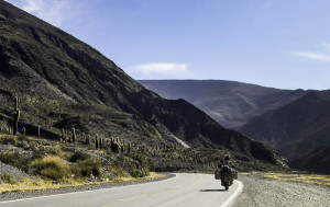 strada tra cactus argentina del nord